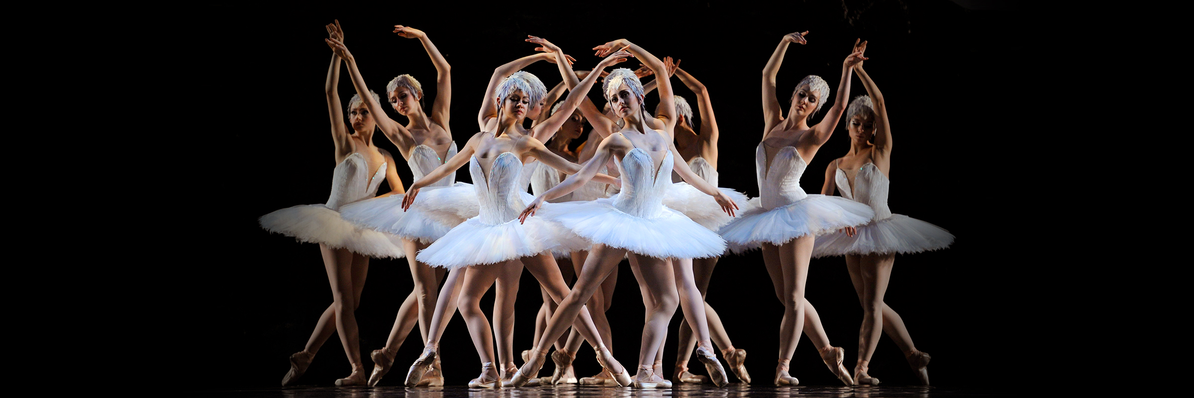 Standing in various poses, arms raised or horizontal, nine swans surround a distraught Odette following Siegfried's broken vow