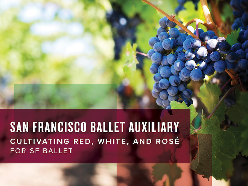 San Francisco Ballet Auxiliary Cultivating Red White & Rose for SF Ballet