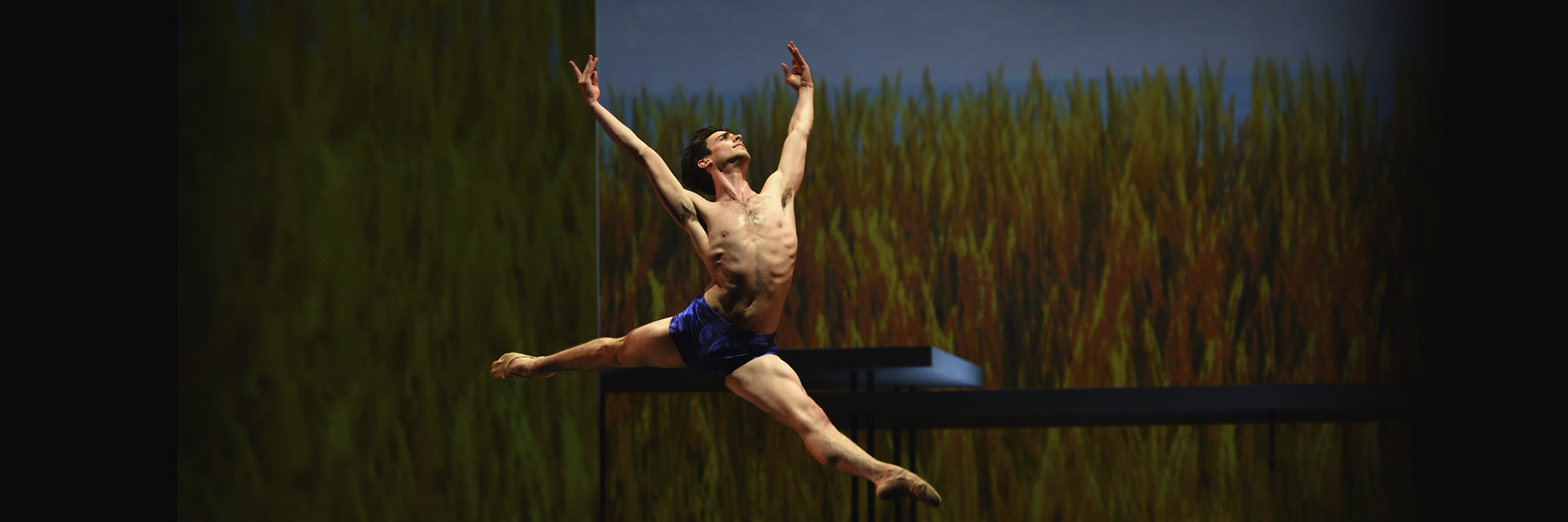 Joseph Walsh leaping in Yuri Possokhov's Swimmer