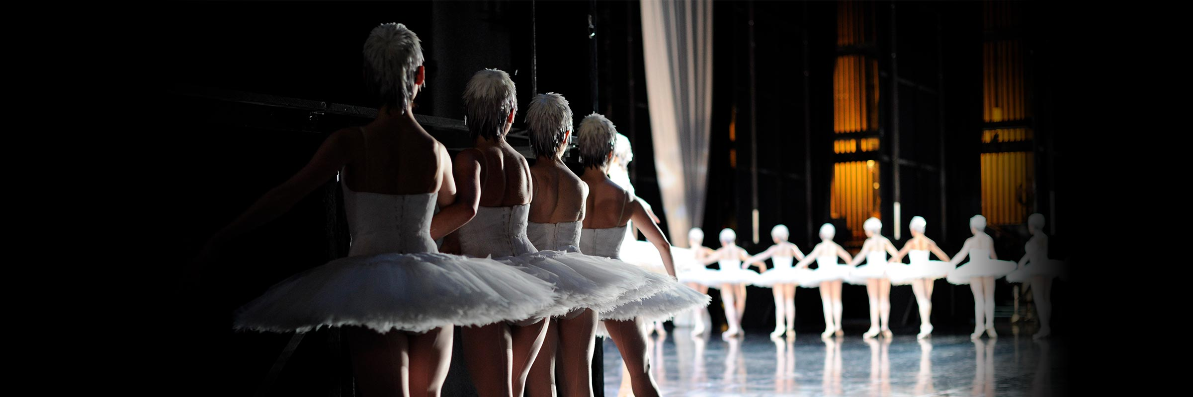 A line of dancers portraying swans—with white feathered skull caps, bodices, and tutus—prepare backstage for their entrance